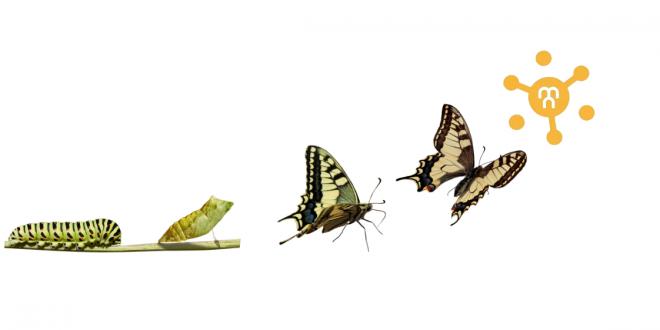 Crecimiento personal: Comienza dando forma a tu VIDA